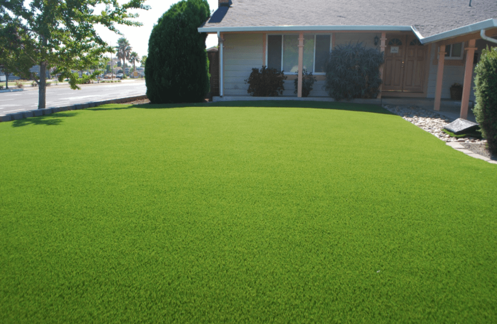 Install Artificial Grass at Modern House