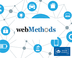 Web methods consultant – accelerating the results of the businesses